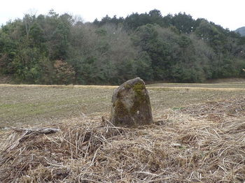 P1360750庚申塚風の石碑.JPG