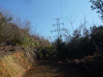 P1360759終点から鉄塔No.144.JPG