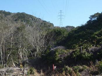 P1360812鉄塔No.141からNo.140方向.JPG