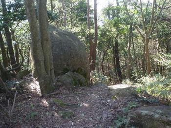 P1370054小岩.JPG