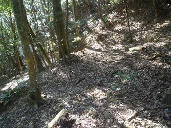 P1370064大石の休憩所.JPG