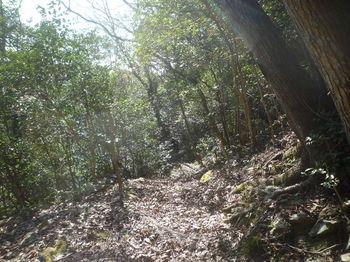 P1370073木漏れ日の休憩所.JPG