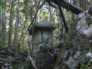 P1370105堂裏の石祠.JPG