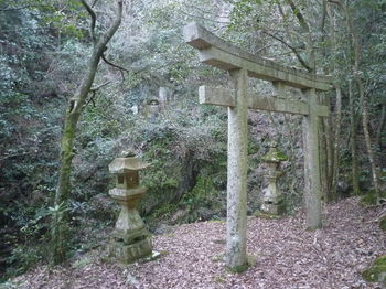 P1370108石鳥居・崖中腹の石仏.JPG