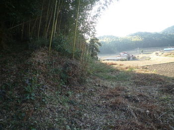 P1370125耕作地へ下る(逆方向).JPG