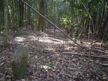 P1370161境界石.JPG
