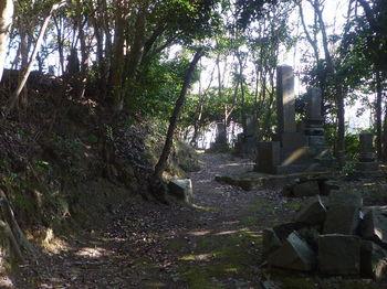 P1370324墓地.JPG