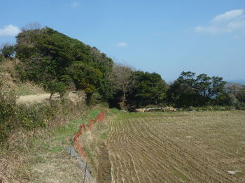 P1370351耕作地沿いの農道.JPG