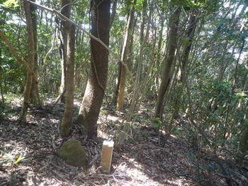 P1370392石杭「村林界」.JPG