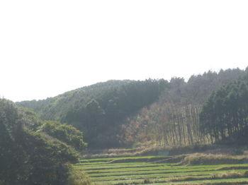 P1370428広域農道から道元山.JPG