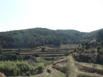 P1370429広域農道から西進山.JPG
