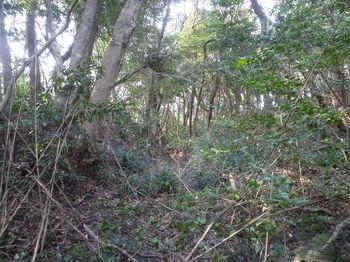 P1370484掘割道出合い(右方向).JPG