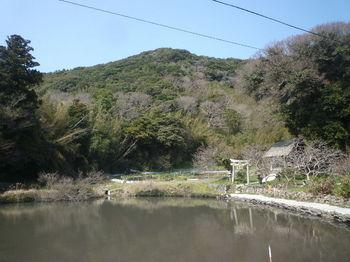 P1370573 200mピーク・大社神社.JPG