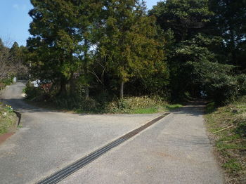 P1370575舗装林道分岐.JPG