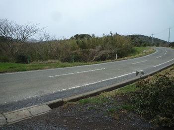 P1370671農免道路.JPG