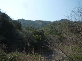 P1370914堰堤から山島山.JPG
