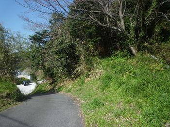 P1380124墓地への舗装道.JPG