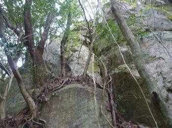 P1380178右上方の大岩.JPG