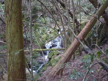 P1380194ナメ滝.JPG