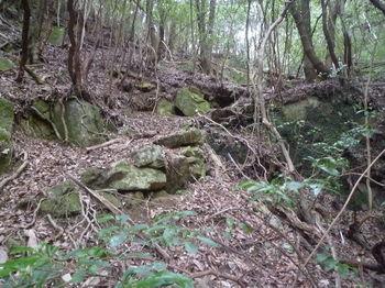 P1380277滝右岸の山道.JPG