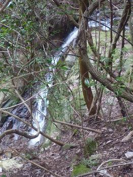 P1380290滝.JPG
