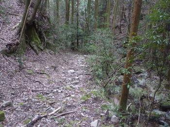 P1380293ガレ石の林道.JPG
