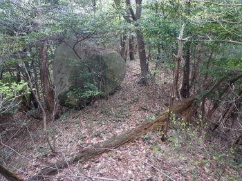 P1380715小岩.JPG