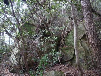 P1380726岩①.JPG
