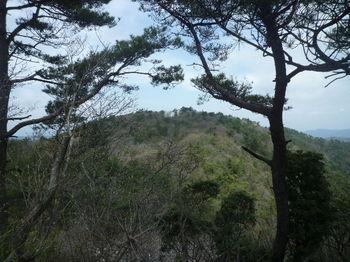 P1380744烏帽子岳山頂.JPG