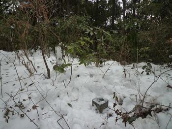 P13積雪の山頂.JPG