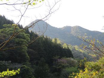 222高崎山.JPG