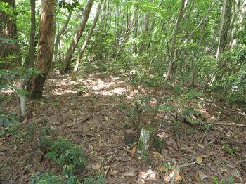 IMG_0665植林頂部のコン杭「火の用心」.JPG