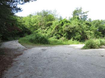 IMG_0714林道分岐(左へ).JPG