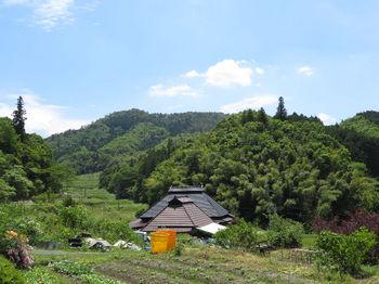 IMG_0830野丸岳.JPG