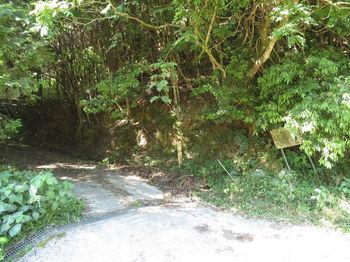 IMG_0844林度入口.JPG