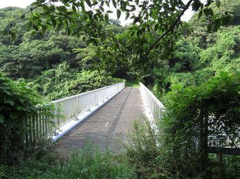 IMG_1199陸橋.JPG