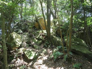 IMG_1444重ね岩②(石山山頂).JPG