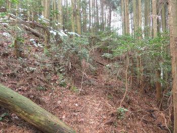 IMG_8217山道出合い.JPG