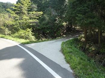 P1050262林道入口.JPG