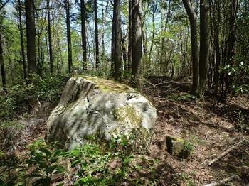 P1050295支尾根分岐近くの小岩(逆方向).JPG