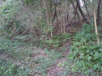 P1370793遊歩道分岐・丸木階段.JPG