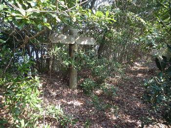 P1370831 遊歩道合流点・縦走線標識.JPG