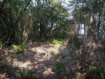 P1370855山島山山頂.JPG